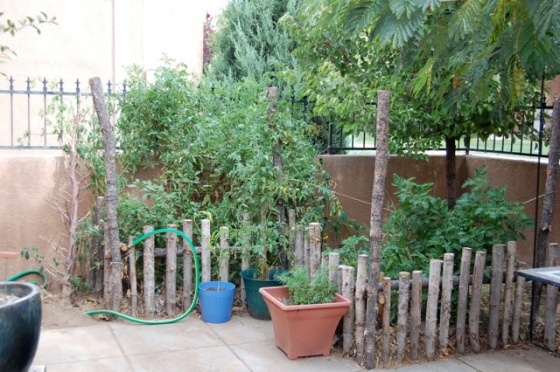 Garden After Permaculture