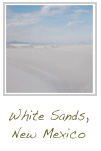 white sands button
