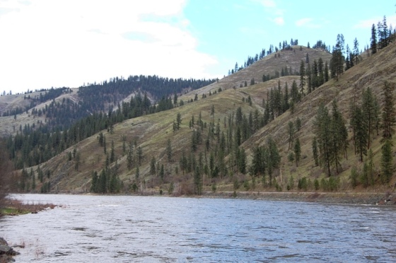 Drive through Idaho National Forest