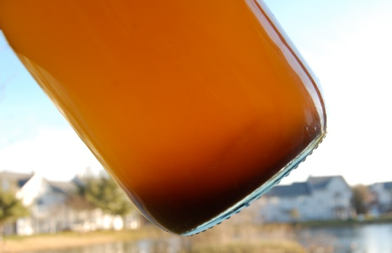 sediment that forms as ginger beer ferments- this is good for you!