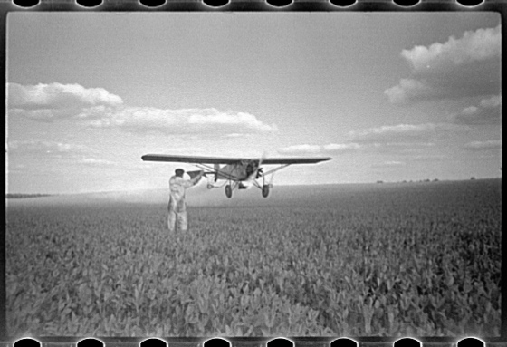 "July 1938 ""Duster plane spraying insecticide over a field of beans. The mechanic in the foreground indicates the outside limit of the last ""swath"" which has settled by the time the plane returns. Note how low the plane flies. Beanfields like this, hundreds of acres in extent, are plowed, planted cultivated and even harvested by tractors. Seabrook Farms, Bridgeton, and Vineland, New Jersey""Farm Security Administration - Office of War Information Photograph Collection (Library of Congress)"