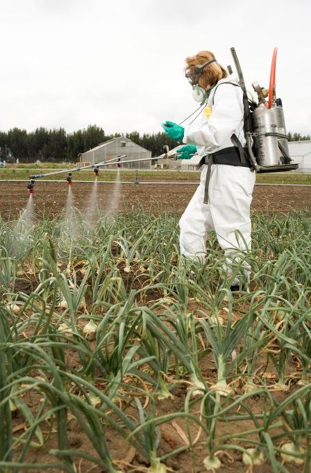 Can Cat Pesticide
