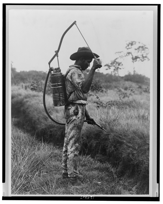 man spraying pesticides 1890-1925 library of congress  [London : Allied Forces Supreme Headquarters, Psychological Warfare Division, 1944]