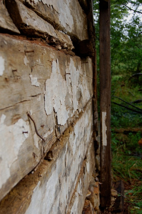 wooden walls of abandoned house