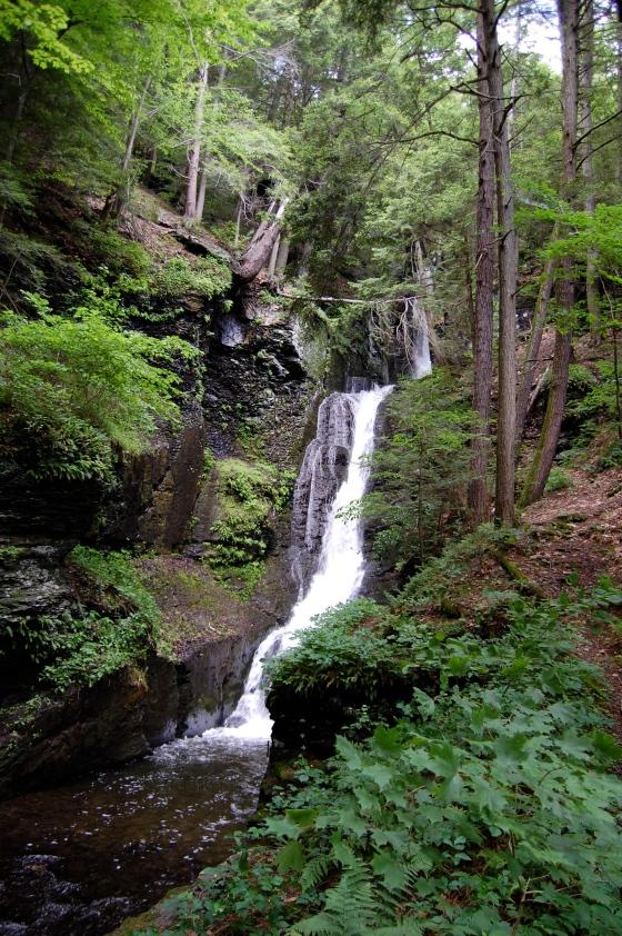 First Water Fall Dingman's Falls