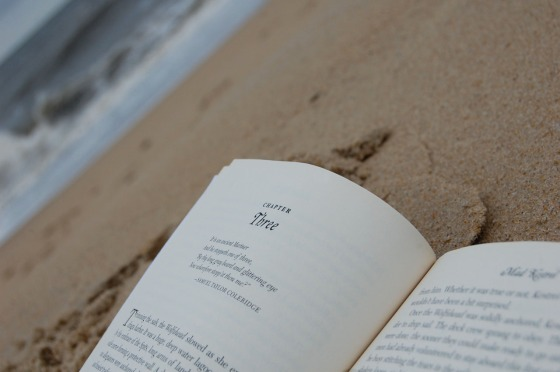 cloudy days are good for reading pirate books on the beach